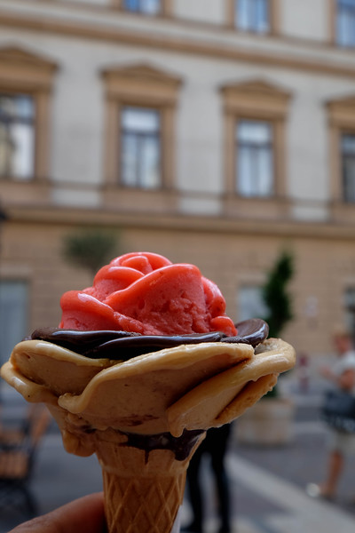 Budapest_Hungary-160702-111.jpg