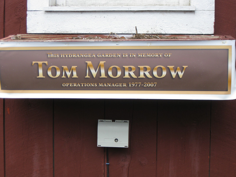 Tom Morrow memorial hydrangea garden sign.