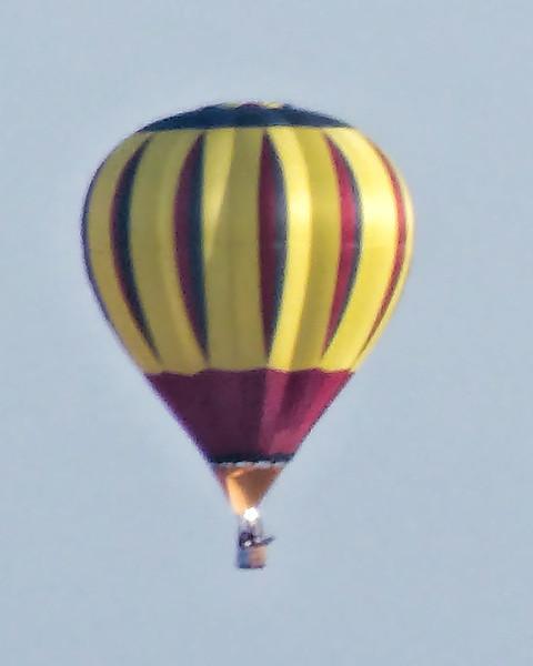 235 Michigan August 2013 - Hot Air Balloons.jpg