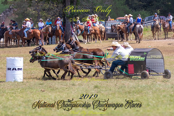 Saturday 4up Mules