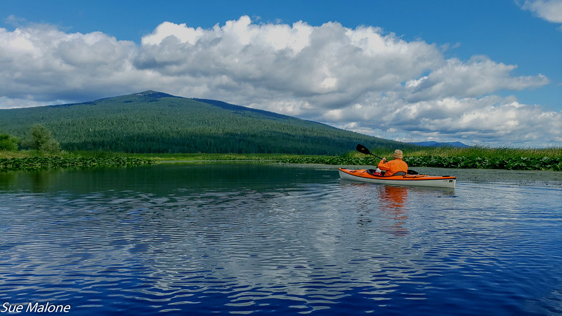 07-16-2019 Crystal Creek Kayak-16.jpg