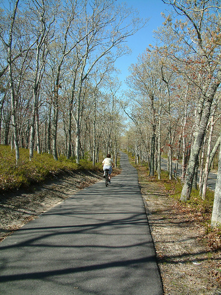 Martha's Vineyard - Mom cycling down bikepath.jpg
