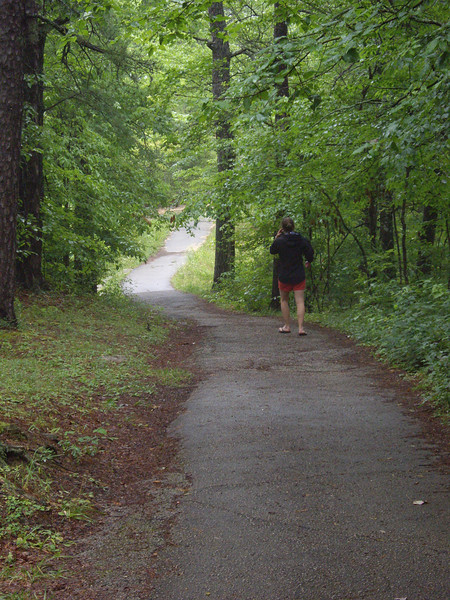 A rainy, humid walk at Sky Bridge in Red River Gorge.
