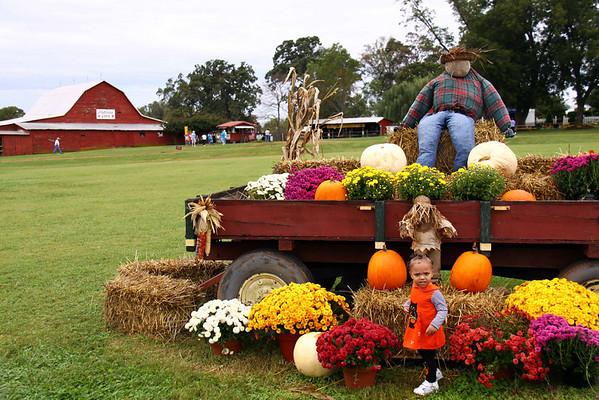 2009 October - The Farm