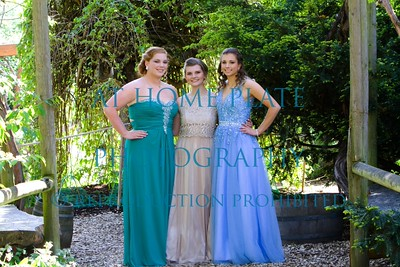 RHS 2015 prom images