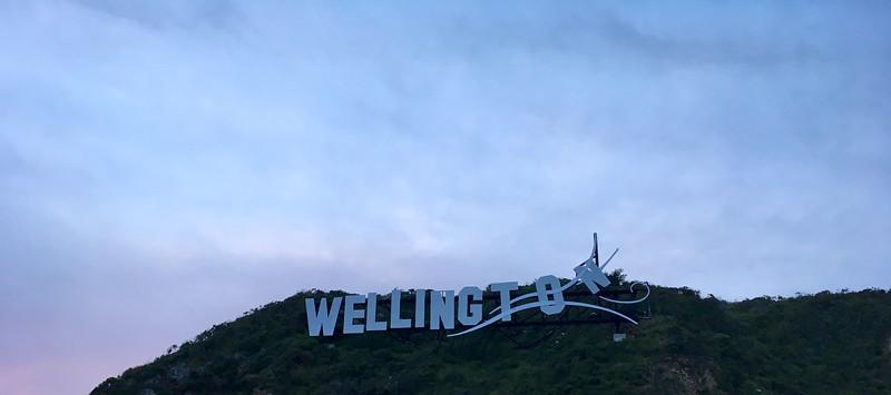 Wellingto-o-o-on....