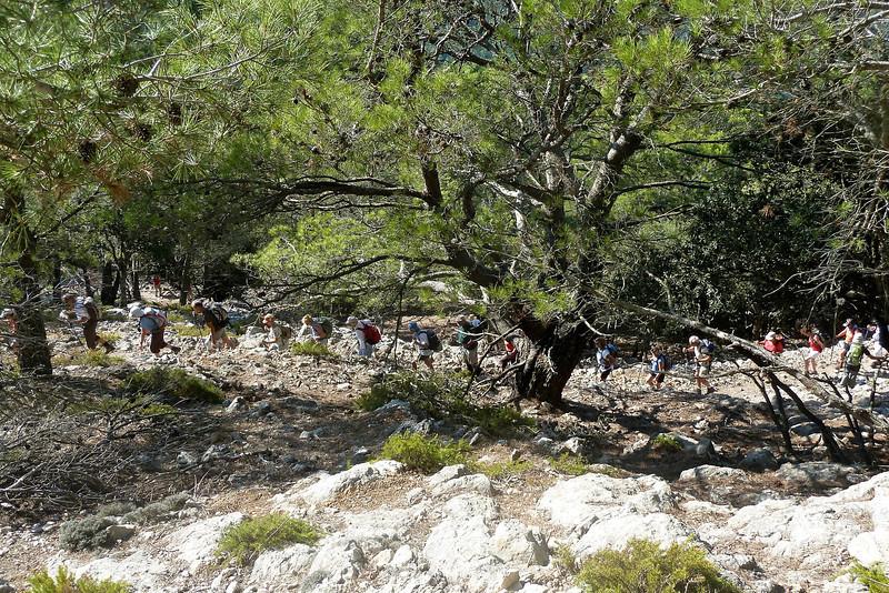 Trek Valdemossa - Puig des Teix.