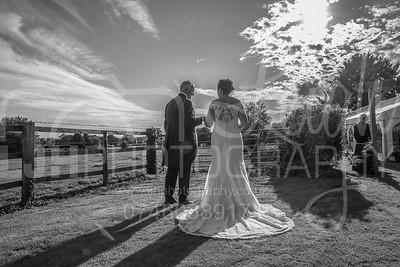 Paula & Brian's Wedding Day