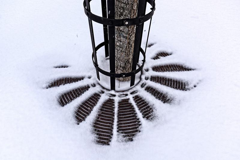 HUDSON-SNOWY-4.jpg