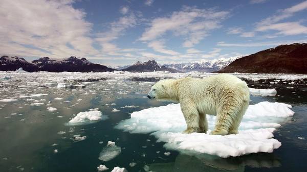 29 July, 2016 :in Environmental Issues, Science-stop-global-warming-.jpg
