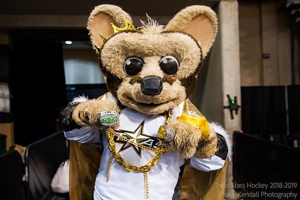 04-05-2019 Texas Stars vs Rockford Icehogs