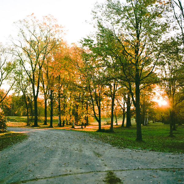Autumn Hike 120 Film-00004.jpg