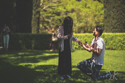Peter and Caroline Proposal Watermark
