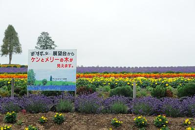150720 biei - furano - asahikawa