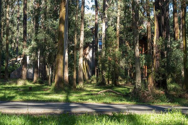 Toolangi Discovery Centre