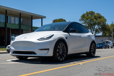 Model Y - XPEL Stealth and Oreo Style