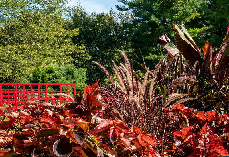 Red bridge and fall-themed plantings