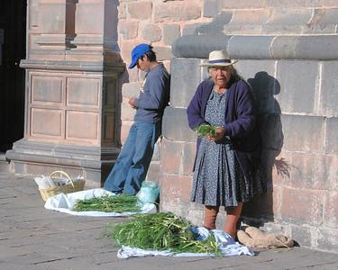 Cuzco and Chinceros
