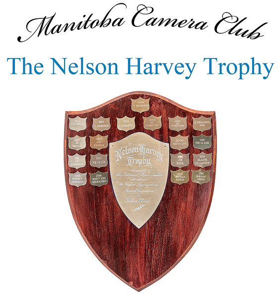 The Nelson Harvey Trophy 4.jpg