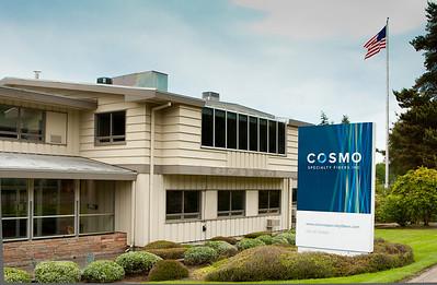 Cosmo Specialty Fiber, ppt, June 11, 2012