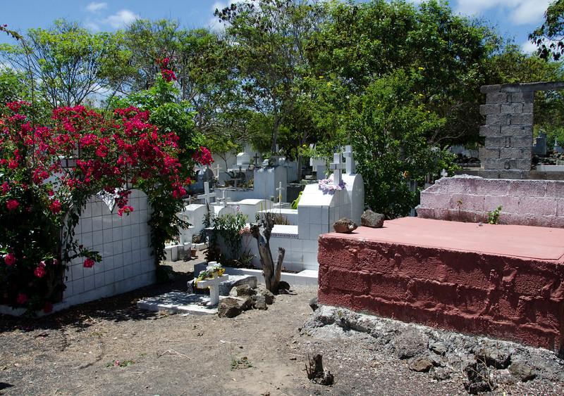 Cemetery on Santa Cruz, Puerto Ayora