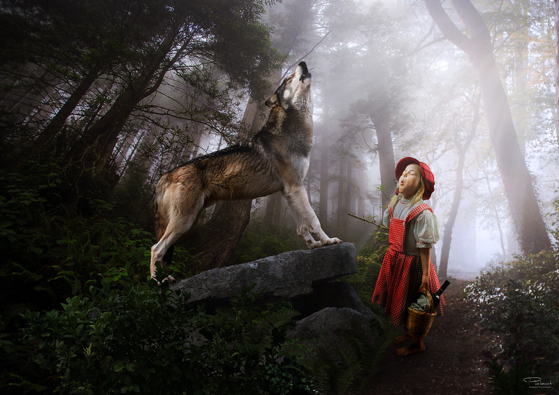 Red riding hood meets the wolf