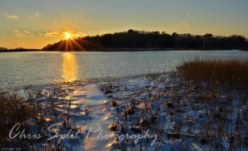 frozen marsh.jpg