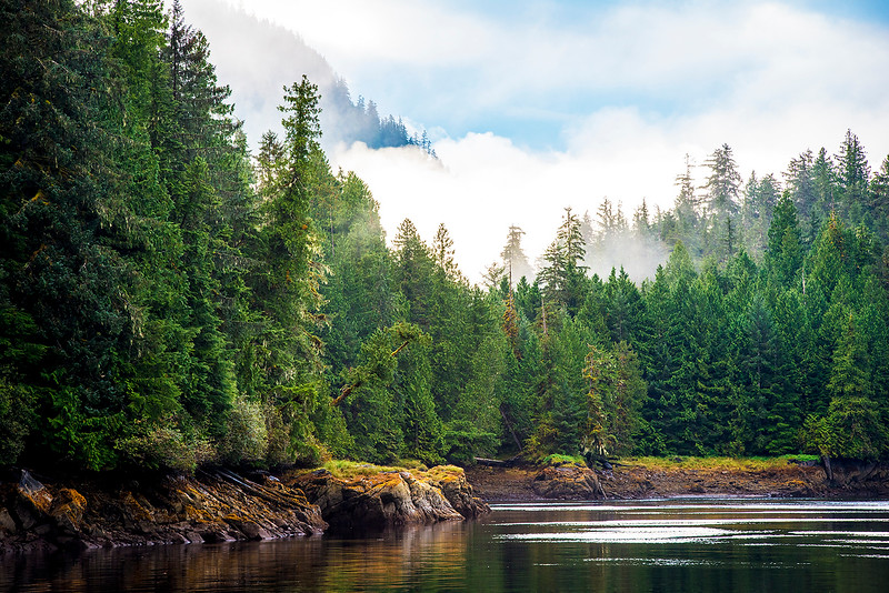 Shoreline- Southeast AK