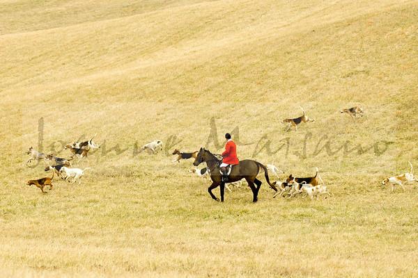 Blue Ridge Hunt at Shannon Hill 2-14-17