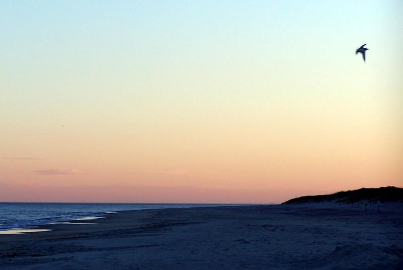 Roger's Beach.