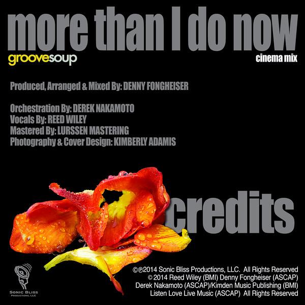 JUL2014 MTIDN CM Credits.jpg