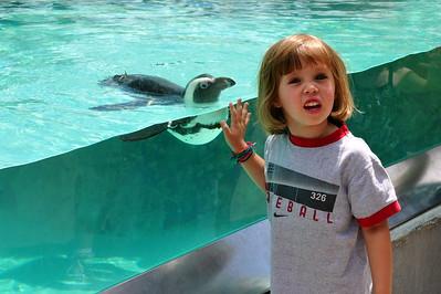 2010-07-02 - Mystic Aquarium