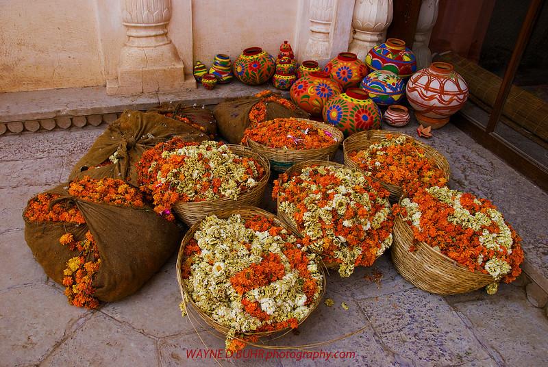 India2010-0205A-24A.jpg