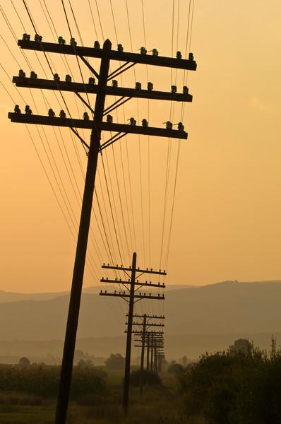 Electric poles running along railway lines near Sapanta, Maramur