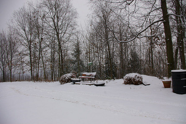 Wish You Were Here: A Walk in the Snow, Part 2 (Slide Show)