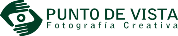 Puntodevista_logo_verde.png