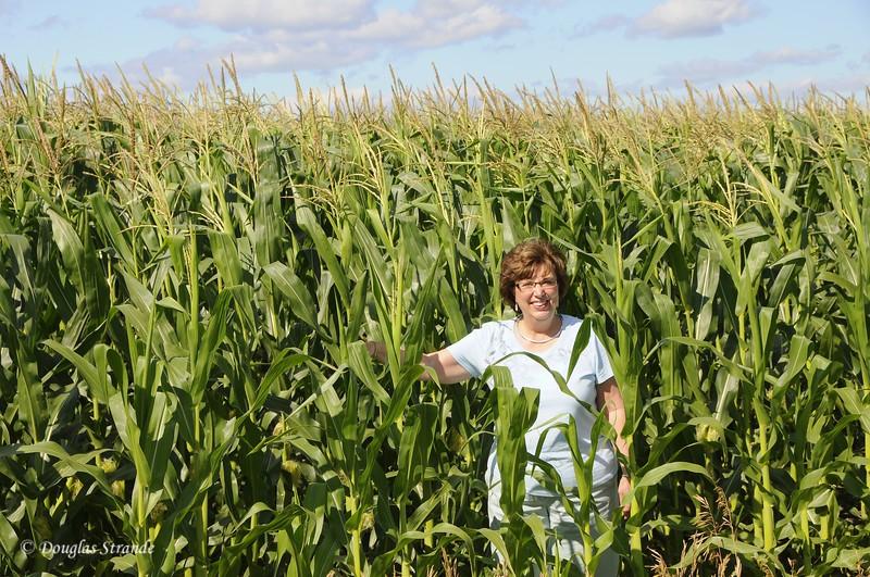 2010   Louise in the Corn