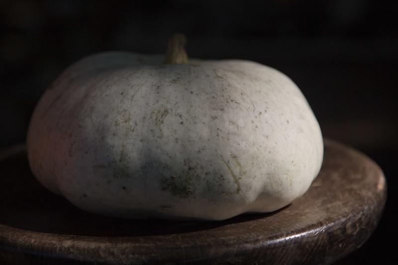 white-pumpkin-Z73A6507www.jpg
