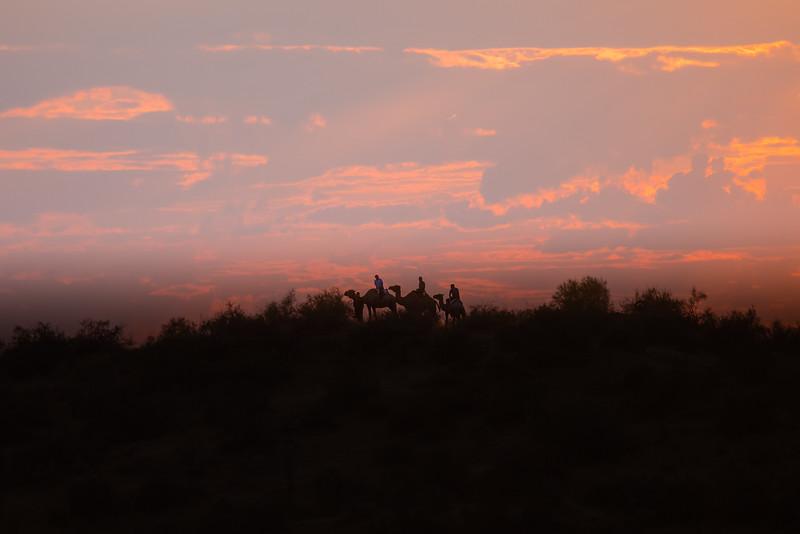 Aydar Kul Desert, Uzbekistan Travel
