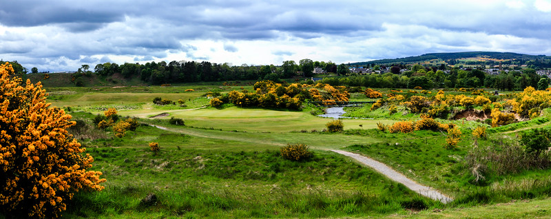 -tain-golf-photography-scotland--3.jpg