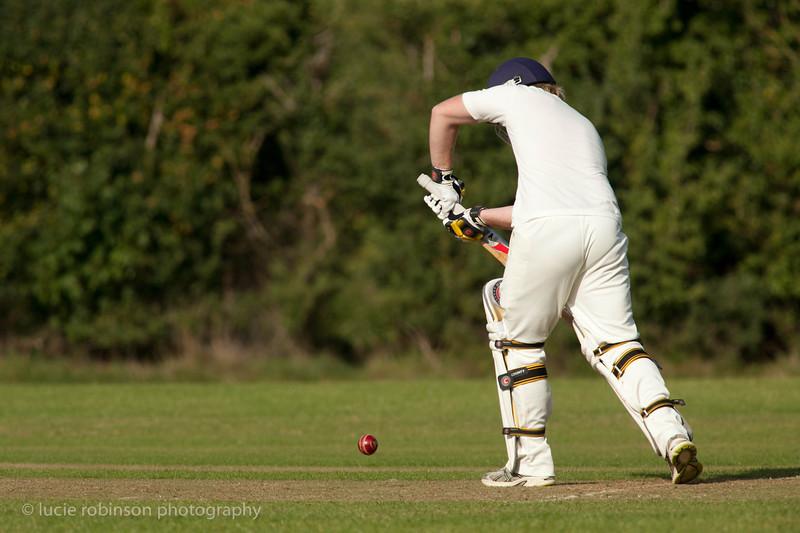 110820 - cricket - 399.jpg