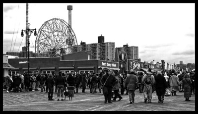 Coney Island Polar Bear 01/01/2013