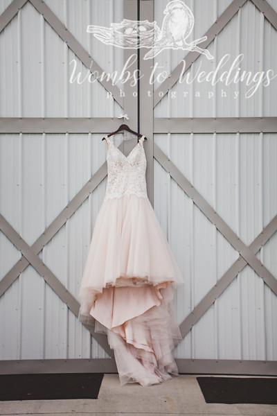 Central FL wedding photographer-0042.jpg