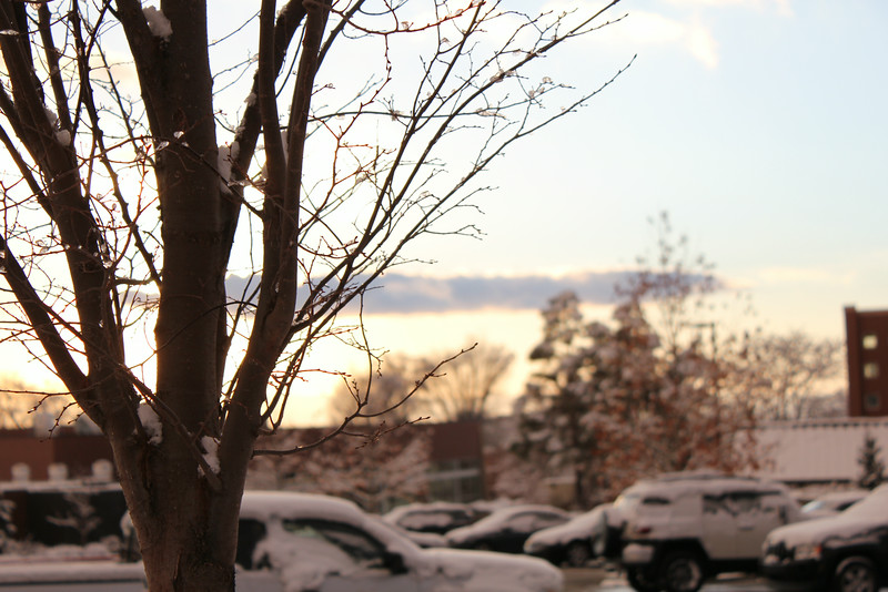 Winter_Scenery_12_19_2012_4075.JPG