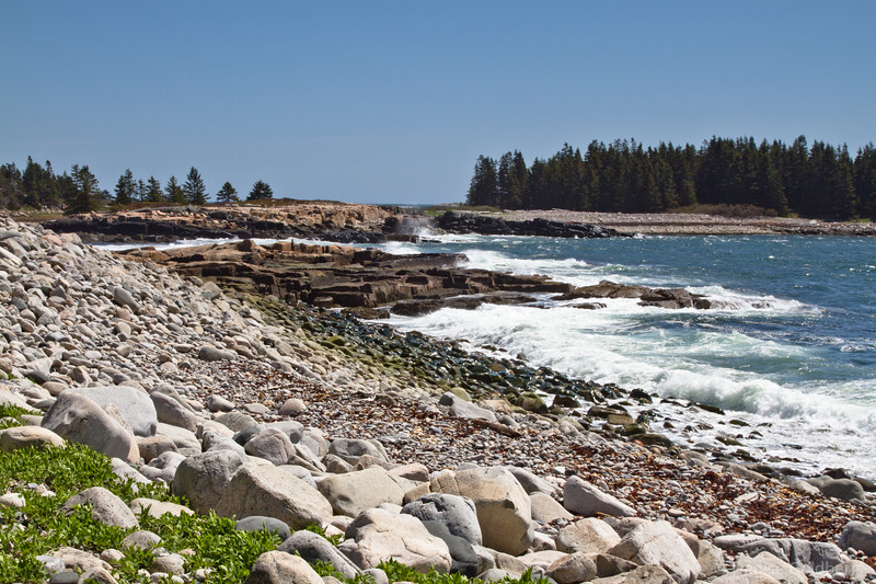 along the Schoodic Peninsula
