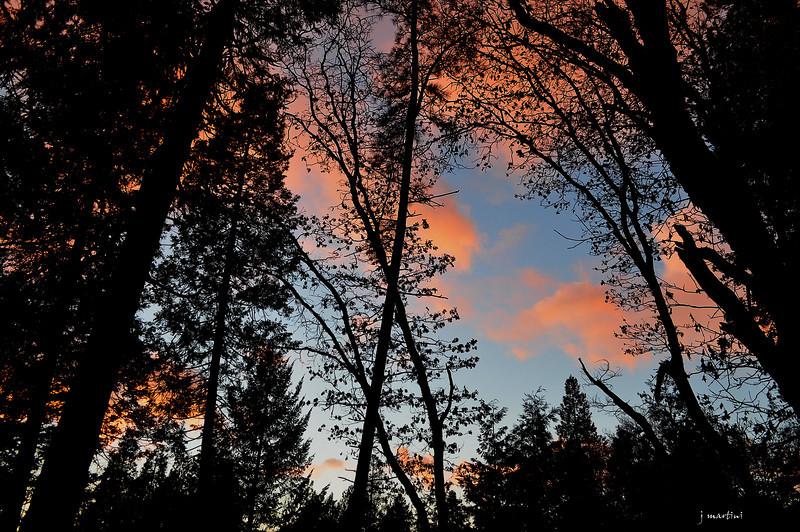 good evening 1-10-2013.jpg