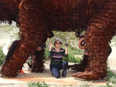 03-11-17 CAC Anza Borrego Desert SP