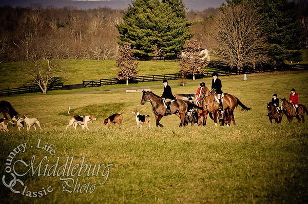 Middleburg Hunt-Thanksgiving 2011