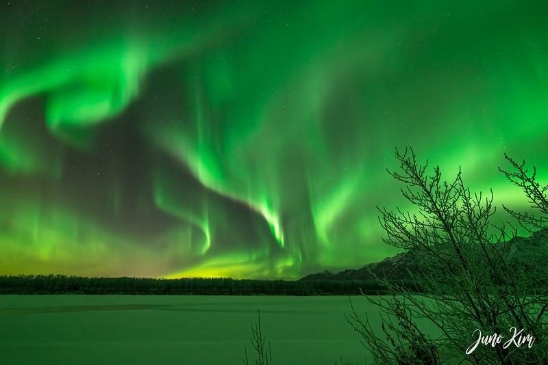 Nov20_Knik River Aurora__6105218-Edit-Juno Kim.jpg