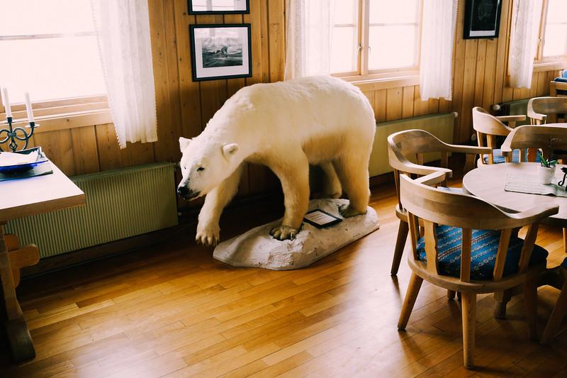 Svalbard-2013-82.jpg